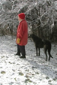 Wendy with dogs in Snow